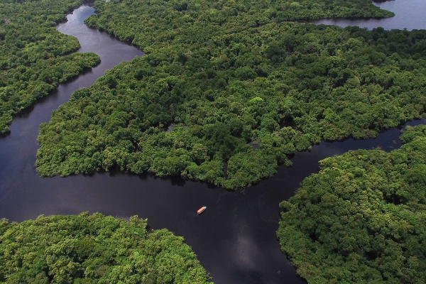 amazonia vista aérea